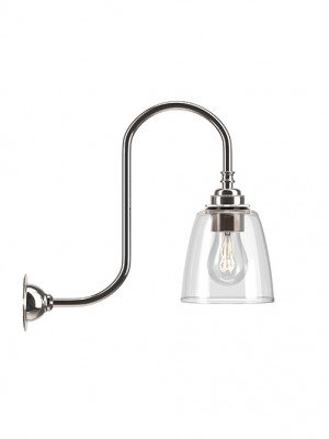 Pixley Clear Glass Swan Neck Wall Light